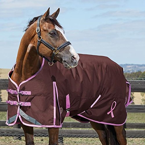 Weatherbeeta Comfitec Plus Breast Cancer Foundation Standard Neck Medium Charcoal/Pink 72'' by Weatherbeeta