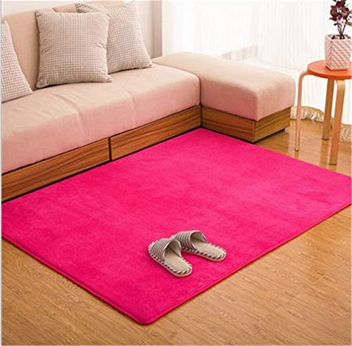 Bagless Valve - BaiJu Fashion Memory Bedroom Rugs Mats Carpet Doormat for Hallway Living Room Kitchen Floor Outdoor Rose red 600mm x 1600mm