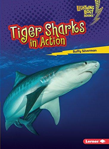 - Tiger Sharks in Action (Lightning Bolt Books ® _ Shark World)