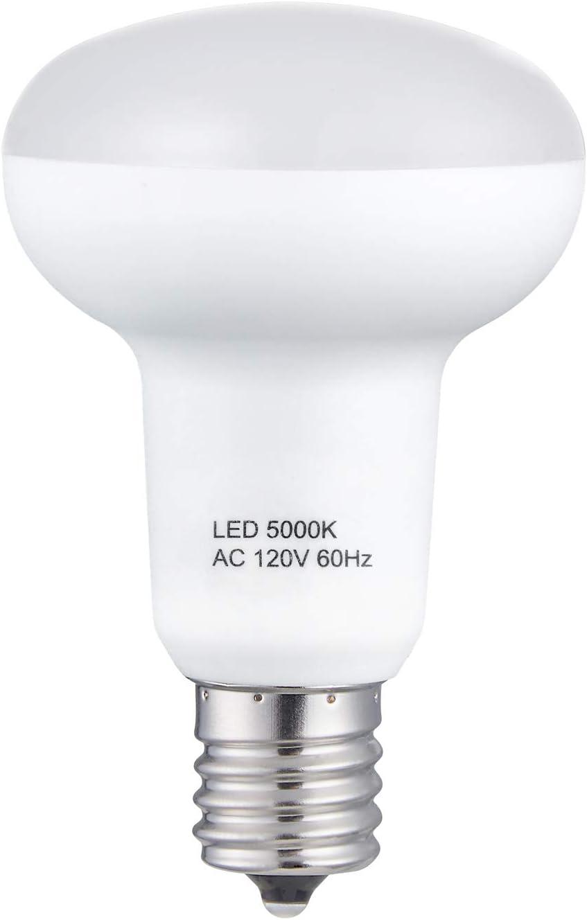 Desk Lamp Landscape 50W Halogen Replacement Bulb for Reading Lamp Track Lighting Daylight 6000k LED Spot Light 120V Cabinet Lamp Recessed 5W LED E17 Light Bulbs Pack of 2