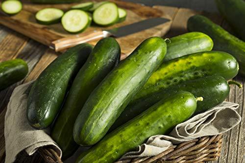 Sweeter Yet Hybrid - Cucumber Seeds