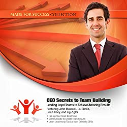 CEO Secrets to Team Building