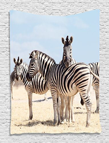 Zebra Tapestry Wildlife Wall Decor by Ambesonne, Three Zebras in National Park and Savannah Safari Picture Design, Bedroom Living Dining Room Accessories Wall Hanging, Black and White Gray Beige (Zebra Picture For Wall)