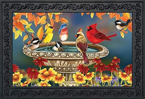 Briarwood Lane Fall Birdbath Floral Doormat Cardinals Bluebird Indoor Outdoor 18 x 30
