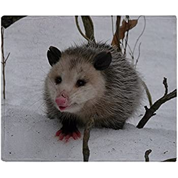 CafePress Snow Possum Soft Fleece Throw Blanket, 50