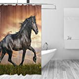 LORVIES Arabian Horse Shower Curtain Set Polyester Fabric Water Repellant Bathroom Shower Curtain Set Home Decoration with Hooks, 72W X 72L Inches