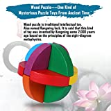 Wooden Brain Games, Jakpak Wood Puzzle Toy Brain Teasers Classic Wooden Traditional Intelligence Development Game Puzzle Cube Logic Puzzle Educational Toy IQ Game for Kids and Adults Cube Puzzles