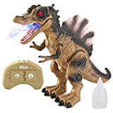 Jumbo RC Remote Control Spinosaurus Dinosaur T-rex Toy with Light & Sound, Electronic Walking, Spray Mist