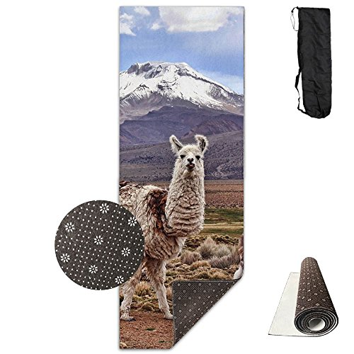 HHFASN Prairie Llama Yoga Mat Classic Exercise Mat NonSlip Training Fitness Mat With Carrying Travel Bag For Home Gym Flooring