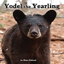 Yodel the Yearling Audiobook by Mary Holland Narrated by Tyler Stoe