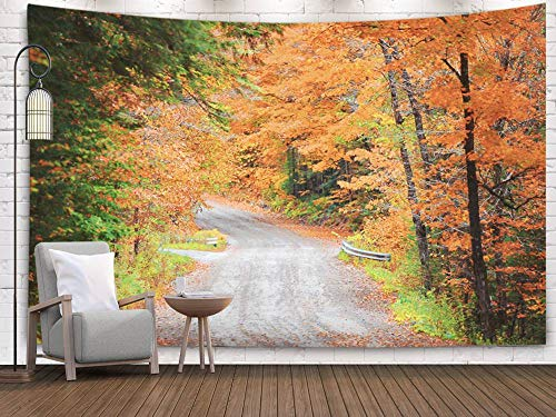 Shorping Art Tapestries, 80x60Inches Hanging Wall Tapestry for Décor Living Room Dorm Drive in Rural New Hampshire