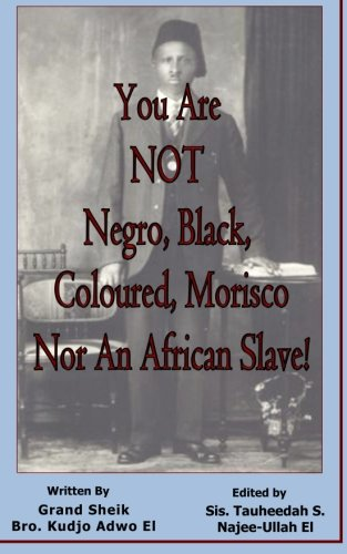 Download You Are NOT Negro, Black, Coloured, Morisco Nor An African Slave! pdf