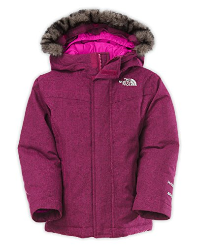 The North Face Toddler Girls Greenland Down Jacket