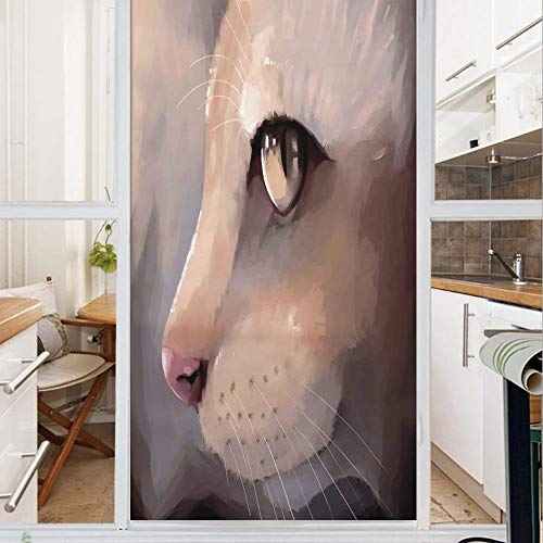 - Decorative Window Film,No Glue Frosted Privacy Film,Stained Glass Door Film,Illustration Cat Portrait Kitty Zoom Face Big Eyes Whiskers Meow Contemporary Artful Design,for Home & Office,23.6In. by 47.