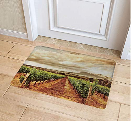 JYDIY 3D Printing Doormat, Decorative Polyester Floor Mat with Non-Skid Backing, 16W X 24L Inches Entry Carpet ()