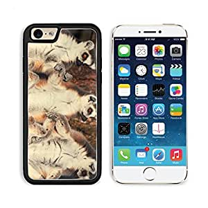 Lemurs Animals African Catta Mammal Wildlife Apple iPhone 6 TPU Snap Cover Premium Aluminium Design Back Plate Case Customized Made to Order Support Ready Liil iPhone_6 Professional Case Touch Accessories Graphic Covers Designed Model Sleeve HD Template W