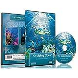 Underwater DVD- The Living Ocean - Relaxing Scenes of the Underwater World
