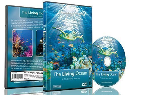 Underwater DVD- The Living Ocean - Relaxing Scenes of the Underwater World ()