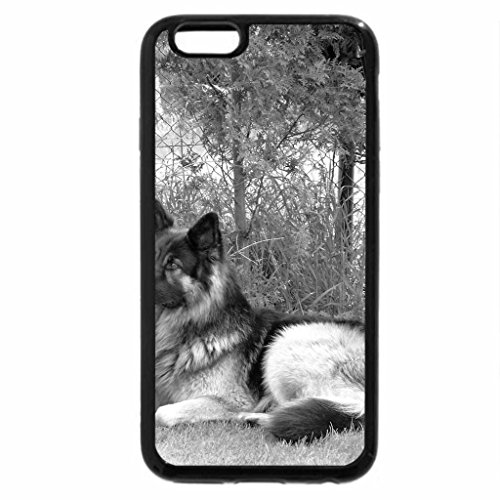iPhone 6S Plus Case, iPhone 6 Plus Case (Black & White) - my dog arco