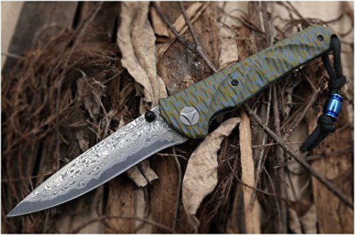 Cool Hand 4.38'' Closed Folding Knife, 3.25'' VG10 Damascus Blade with Artistic Pattern G10 (Folder G10 Handle)