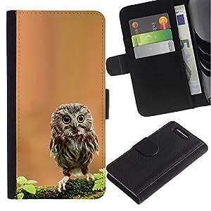 Sony Xperia Z1 Compact / Z1 Mini (Not Z1) D5503 - Dibujo PU billetera de cuero Funda Case Caso de la piel de la bolsa protectora Para (Cute Curious Mini Owl)