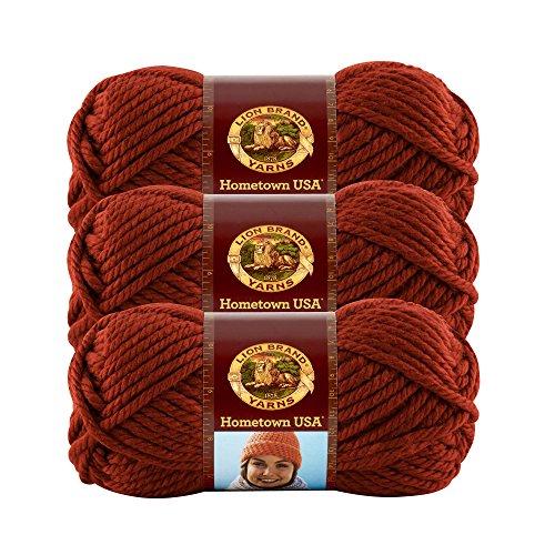 (3 Pack) Lion Brand Yarn 135-114I Hometown USA Yarn, Tampa -