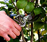PROFESSIONAL-PRUNING-SHEARS-Heavy-Duty-Hand-Pruners-For-Serious-Gardening-Versatile-Razor-Sharp-Garden-Clippers-Tree-Trimmers-Secateurs-and-Steel-Bypass-Pruner-with-100-MONEY-BACK-GUARANTEE