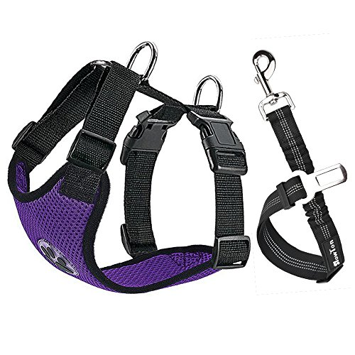 - Slowton Dog Car Harness Plus Connector Strap, Multifunction Adjustable Vest Harness Double Breathable Mesh Fabric with Car Vehicle Safety Seat Belt (XXX-small, Purple)