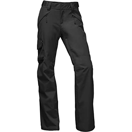 0925d102192 Amazon.com: The North Face Women's Freedom Insulated Pants: Sports ...