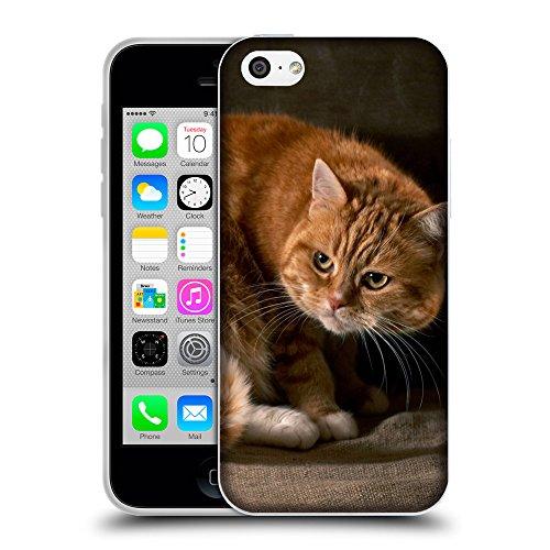Just Phone Cases Coque de Protection TPU Silicone Case pour // V00004295 Malheureuse chat domestique de feu // Apple iPhone 5C