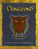 img - for Dungeons: A Guide to Survival in the Realms Below book / textbook / text book
