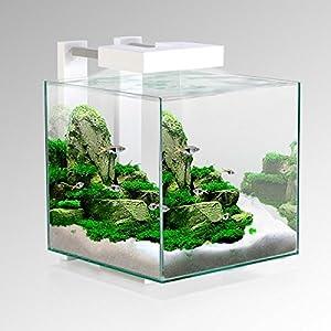 ciano nexus pure 15 cube aquarium l e d light pet supplies. Black Bedroom Furniture Sets. Home Design Ideas