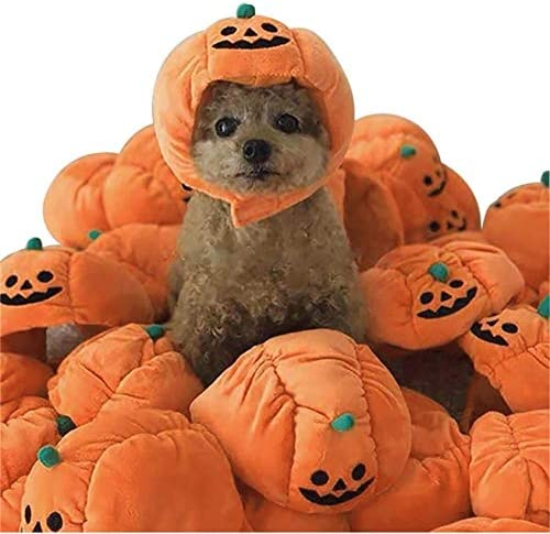 [US Stock] Pet Halloween Thankgiving Costume, 1 Pcs Pet Dog/Cat Pumpkin Headgear Plush Hat, Pet Fancy Party Dress Up Headdress for Cats and Small Dogs Halloween Thankgiving Cosplay Party Decoration