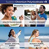 Pure Chromium Polynicotinate Supplement - Made In