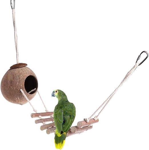 Wimagic - 1 Escalera de Madera Natural con Forma de Nido de Loro y Concha de Coco para Colgar en la Escalera, para Mascotas pequeñas, Loros, Ardillas: Amazon.es: Productos para mascotas