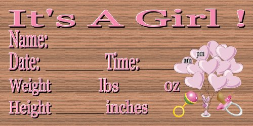 Baby Girl Birth Announcement (Personalize with Sharpie ()