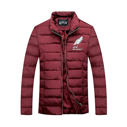 Korean cotton young XL HHY slim short Claret feather tide collar cotton embroidered Pure pqwz4g