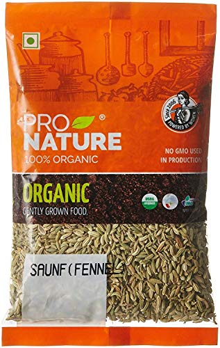 Pro Nature 100% Organic Saunf (Fennel), 250 g by Hindustan Mart