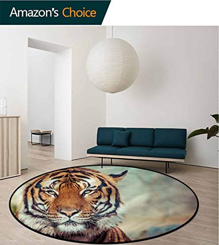 RUGSMAT Tiger Small Round Rug Carpet,Large Calm Wild Cat Blur Pattern Floor Seat Pad Home Decorative Indoor Diameter-39 ()