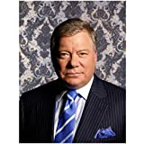 Boston Legal 8 x 10 Photo Boston Legal William Shatner/Denny Crane Pin-Striped Suit Blue & White Striped Tie Vintage Wallpaper Pose 4 kn