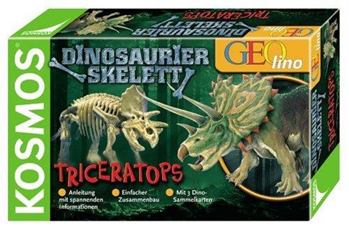 Dinosaurier-Skelett. Triceratops
