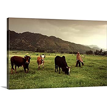 Ethiopian Farmer and in Fertile Pasture Canvas Wall Art Print, 30
