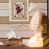 White Embossed Glass Seahorse Lamp