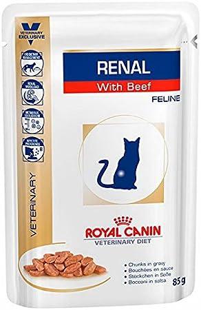 ROYAL CANIN Renal Feline Beef Comida para Gatos - Paquete de 12 x 85 gr - Total: 1020 gr