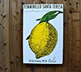 Sorrento Lemon - 24x36'' - Italian Inspired - Limoncello - Salvaged Wood Wall Decor for the Home or Office - Rue Sonoma Original Design