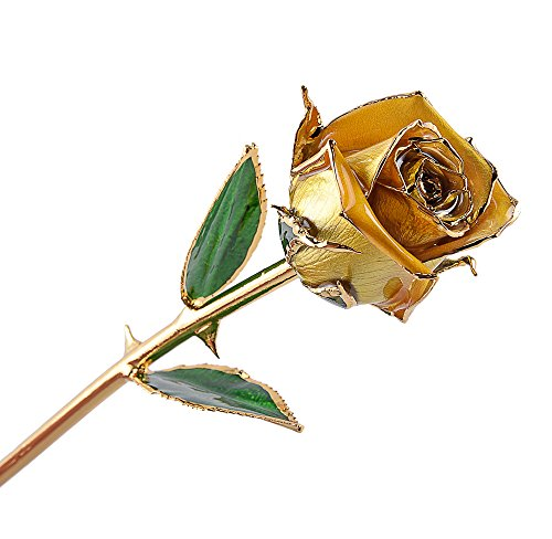 Best Birthday Gift For Mother - M Dream Long Stem Trimmed 24K Gold Dipped Real Rose Golden 11 Inches Set of 1,Best Gift for Valentine's Day, Mother's Day, Anniversary, Birthday