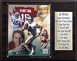 NFL Joe Montana San Francisco 49ers Career Stat Plaque