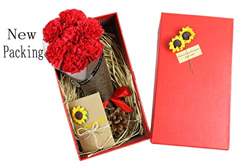 Red Carnations Bouquet + Free Card - Best Gift for Valentine's Day, Mother's Day, Anniversary, Birthday Gift. (Red)
