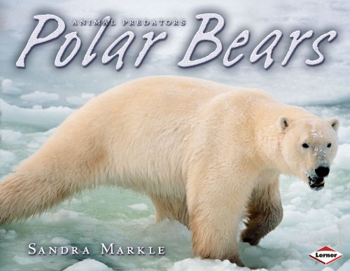 Polar Bears (Animal Predators) pdf epub
