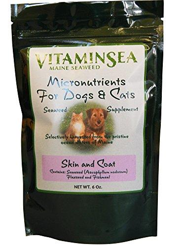 Maine Kelp Seaweed | Skin and Coat 6 oz Dog | Cat Pet Sup...